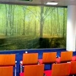 Interior wall with a picture of a forest manifested onto it