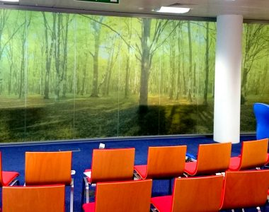 Guardian Digital Window Film for RBS