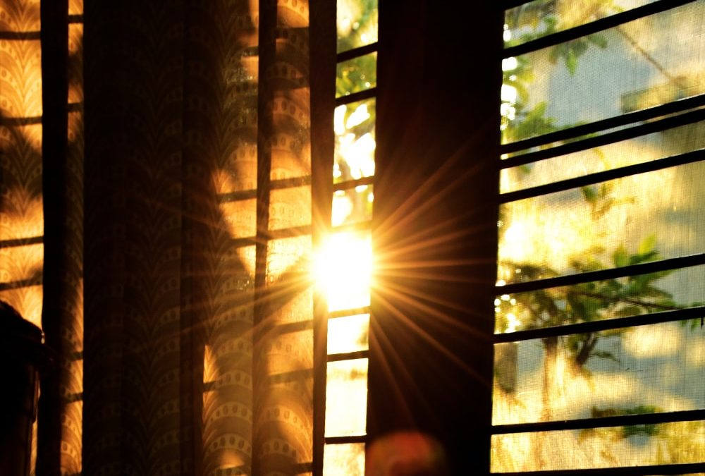 Top 7 Benefits of Solar and Energy Control Window Film